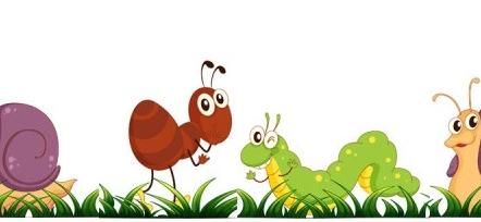 Sala Cielo T.T. Los insectos de mi Jardín