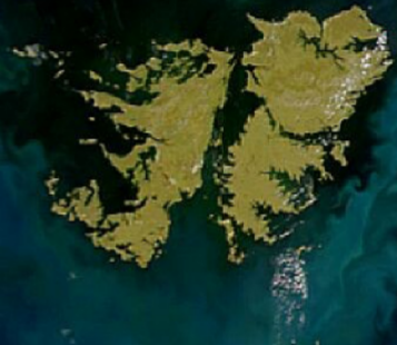 Suplemento Malvinas